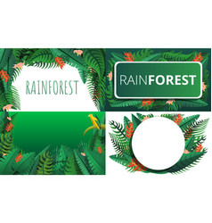 rainforest banner set cartoon style vector image