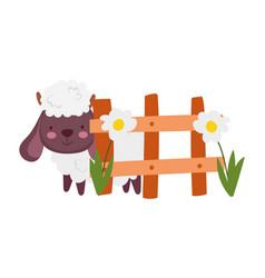 Sheep bovine fence flowers farm animal cartoon vector