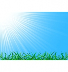 Vector background with grass vector