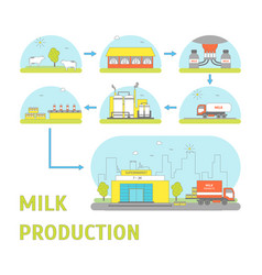 milk production process vector image vector image