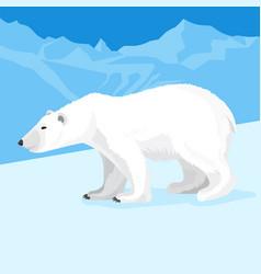 big polar bear at north pole cartoon style vector image vector image