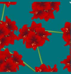 red amaryllis on teal indigo background christmas vector image vector image
