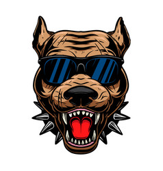 Angry pitbull head in sunglasses design element vector