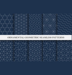 collection seamless ornamental patterns vector image