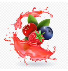 Forest mixed berries juice splash realistic vector