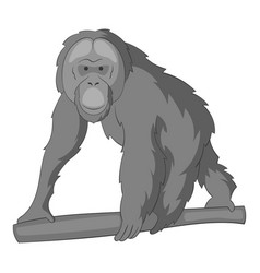 Orangutan icon monochrome vector