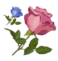 Pink and blue cartoon rose with green leaves vector