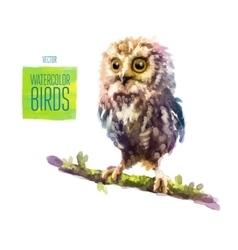 watercolor style bird vector image