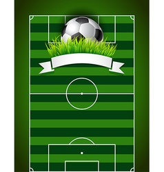Football or soccer ball on green field background vector image