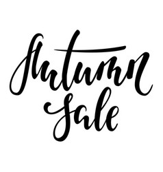 autumn sale hand drawn calligraphy and brush pen vector image