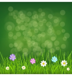 Background with grass and flowers vector