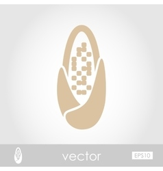 Corncob icon vector