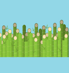 flat bamboo background vector image