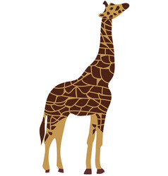 giraffe isolated vector image