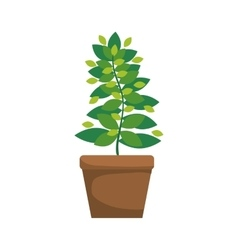 green Leaves and pot icon Garden design vector image