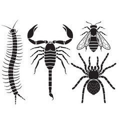 poisonous insects set vector image