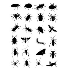 bugs silhouette vector image