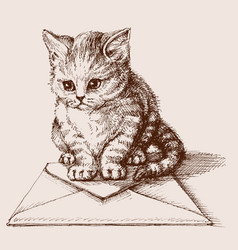 small cat sitting on an envelope vector image