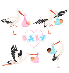 stork with baby cute bird flying with newborn vector image