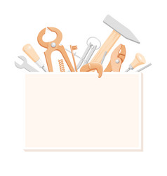 tools in box vector image