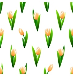 Beautiful seamless pattern with pink tulip flowers vector image