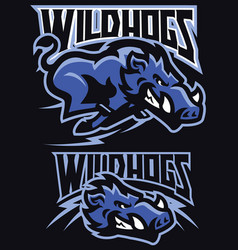 charging wild hog mascot set vector image
