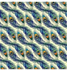 Beautiful pattern with peacock feathers vector image vector image