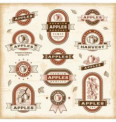 Vintage apple labels set vector image