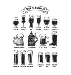 Beer glassware guide various types beer vector