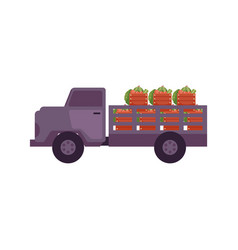 Fresh ripe farm agricultural products delivery vector