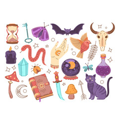 magical witch collection magician symbols hand vector image