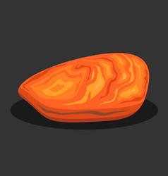 Organic amber stone vector