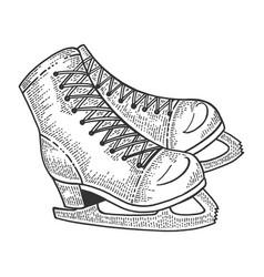 Skates sketch engraving vector