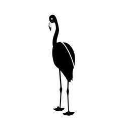 black and white pink flamingo isolated on white vector image