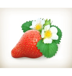 Strawberry with leaves and flowers vector image