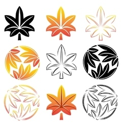 The stylized set maple leaves Japanese symbolism vector image