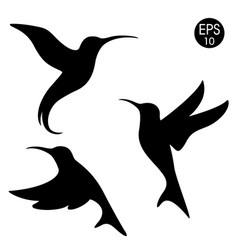 Black hummingbird silhouette vector