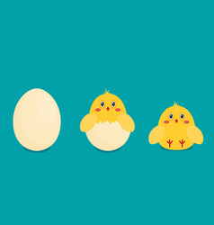 button chicken and egg in flat style vector image