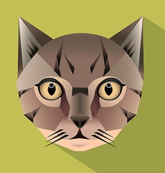 Cat face icon vector image