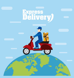 Express delivery service vector