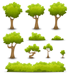 forest trees hedges and bush set vector image