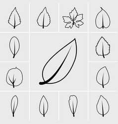 Line leaf icons vector