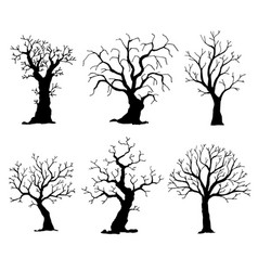 collection of trees silhouettes tree vector image vector image