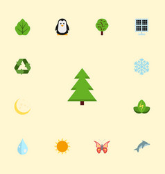 flat icons night tree conservation and other vector image vector image