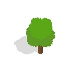 Fluffy tree icon isometric 3d style vector image
