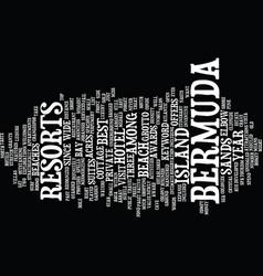 Bermuda rock lizard text background word cloud vector
