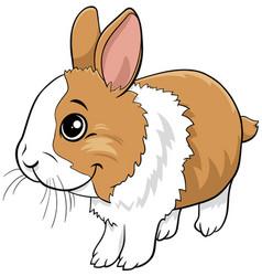 cartoon dwarf rabbit comic animal character vector image