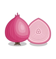 Fresh onion vegetable isolated icon vector