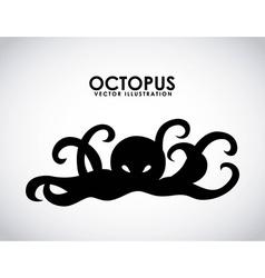 octopus design vector image