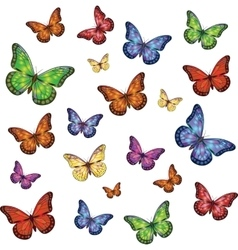 Set of colorful realistic isolated butterflies vector image